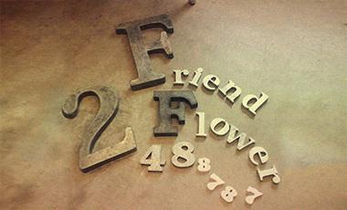 FriendFlower2488787